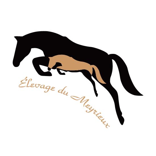 cheval-noir-de-saut-2.1